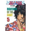 Bleach 5